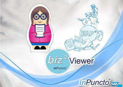 Image view in SAP