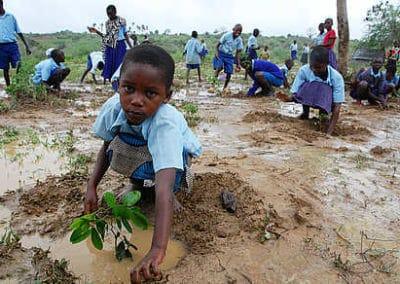 """inPuncto spendet für Projekt """"Aufforstung in Sambia"""""""