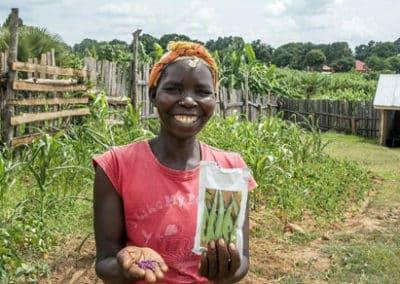 Saatgut für junge Familien in Sudan